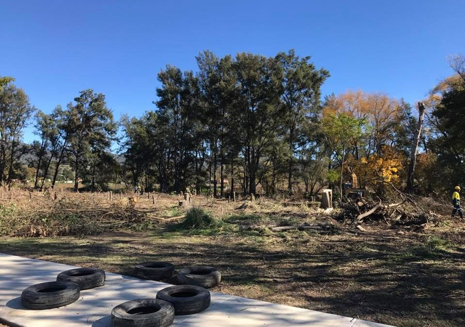 Dubbo Land Clearing: What You Need To Know